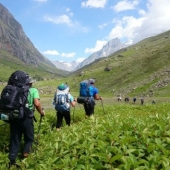 Zelena dolina Parvati
