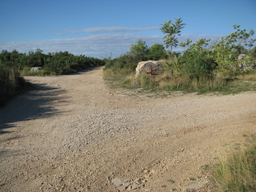 Cesta, ki vodi do uvale Lanđin in Soline