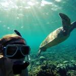 Apo Island – želvji otok